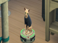 Sims 4 Pet Cheats